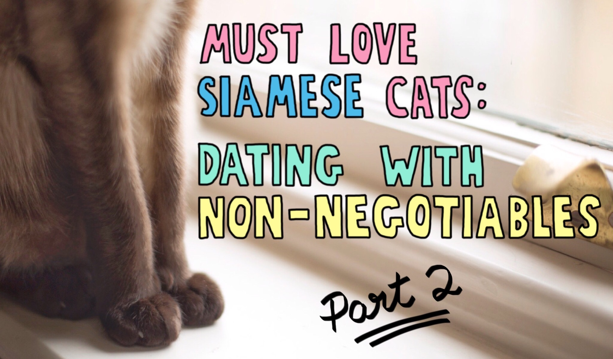 Workplace non negotiables in dating